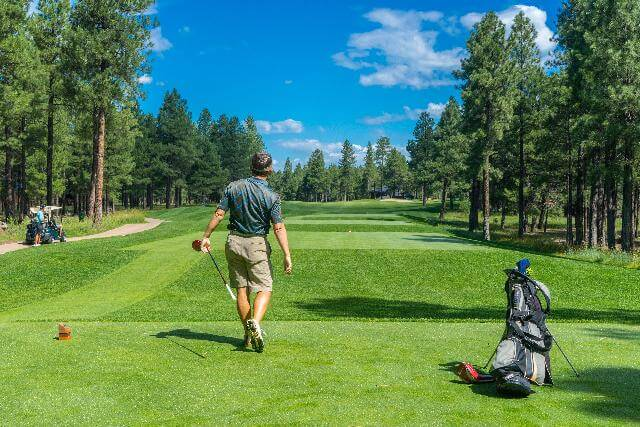 what golf clubs are bendable